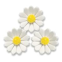 60 pcs Flowers, white