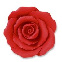 24 pcs Large roses, red