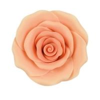 Large roses, salmon