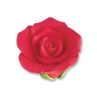 Medium roses, red