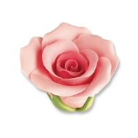 Medium roses, pink