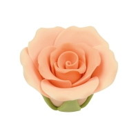 Medium roses, salmon