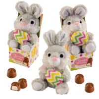 Plush bunny in box filled with pralines