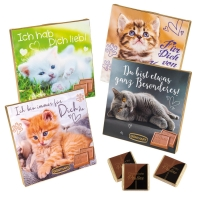 16 pcs Choco praline box with sayings   Cats  , assorted