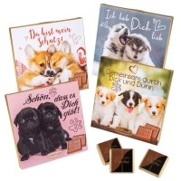 16 pcs Choco praline box with sayings   Dogs  , assorted