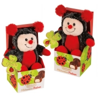 12 pcs Plush ladybird on box, filled with pralines