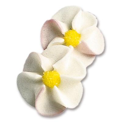100 pcs Apple blossoms