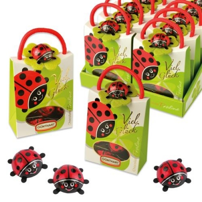 12 pcs Ladybird bag filled with choco ladybirds